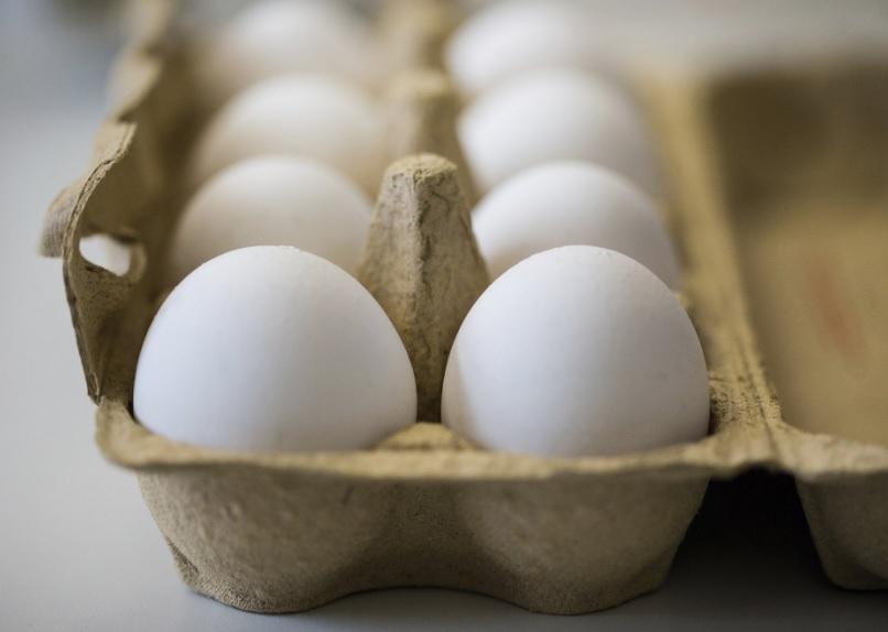 과도한 달걀 섭취, 심장병 확률 높여