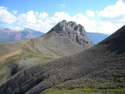 캐나다서 발견된 화석, 현존 최고(最古) 가능성