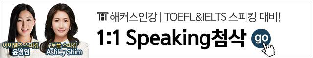 1:1 Speaking_첨삭